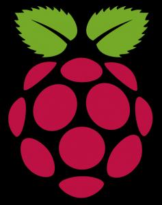 Le logo du Raspberry Pi